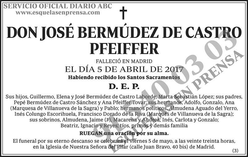 José Bermúdez de Castro Pfeiffer